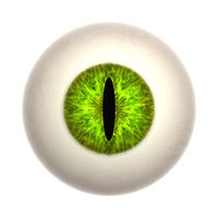 cat eye texture