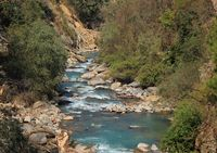 River Langtang Khola. Scene near Shyaphru Besi, Nepal.