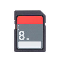 Memory card isolated on white background - 8 Terabyte