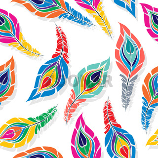 Colored peacock feathers pattern