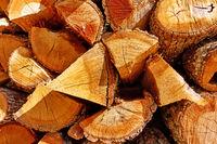 Firewood -  butt-ends of chopped wood logs