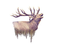 Elk and Forest. Watercolor Double Exposure effect