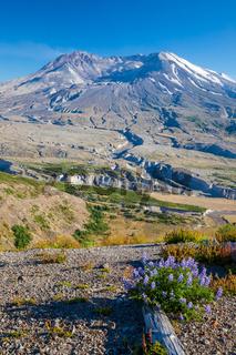 A view of the volcano, Mount Saint Helens, Washington