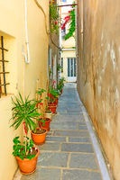 Small side street with flower pots