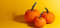 Halloween pumpkins on orange