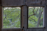 Nature view through English Camp Barn. Old  barn used in Mercury Mining at Almaden Quicksilver Count