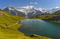 Alpine Landschaft mit Bachalpsee und den Gipfel Wetterhorn