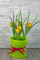 Frühling gelbe Tulpen auf Holz