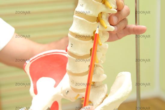Physiotherapie 15