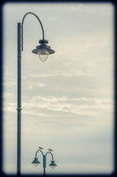 Seagulls sitting on a streetlamp