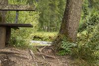 Wooden bench near the Schiederweiher in Austria