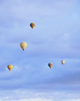 Group of air balloons flying in the sky