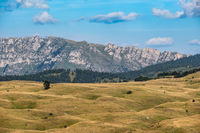 Summer mountain Durmitor National Park, Montenegro. Durmitor panoramic road.