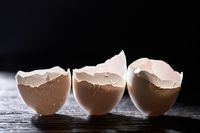 Eggshells into each other