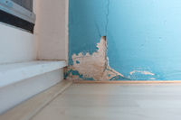 Old peeled wall with mold