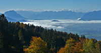 Blick vom Pfänder über den Nebel zu den Alpen