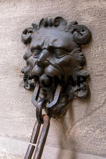 Cast iron door gate design with lion's head
