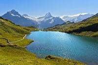 Bachalpsee und den Gipfeln Wetterhorn, Grindelwald, Berner Oberland, Schweiz