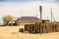 village in the desert Sands in the South of Kazakhstan, near the Aral sea
