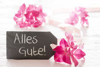 Hydrangea Blossom, Alles Gute Means Best Wishes
