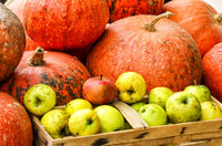 pumpkins and apples on a market in autumn