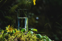 Clear water in a clear glass against a background of green moss with a mountain river in the background. Healthy food and environmentally friendly natural water