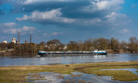 Niedrigwasser der Elbe