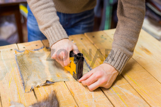 Skinner working with mink fur skin