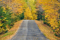 Autumn road in Maine