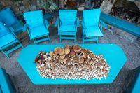 collected mushrooms boletus in pile