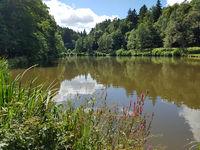 Waldsee, Kurpark, Bad Schwalbach