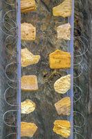 Pieces Of Amber Displayed On Wood, Nida Village, Klaipeda, Lithuania