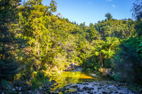 Cleopatra pools in Abel Tasman National Park, New Zealand