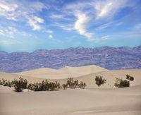 Mesquite Dunes in Death Valley National Park, California