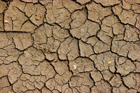 Cracked soil mud - earth global warming, drought in Africa