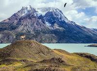 Mountains and lake Pehoe
