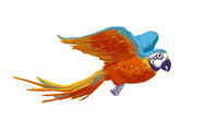 Bright colorful flying parrot, cartoon animal on white
