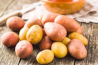 Fresh potatoes. Raw potatoes.