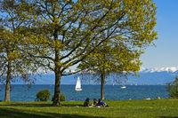 Park am Bodensee-Ufer, Romanshorn, Schweiz