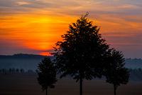 Dämmerung aufgehende Sonne erste Lichtstrahlen