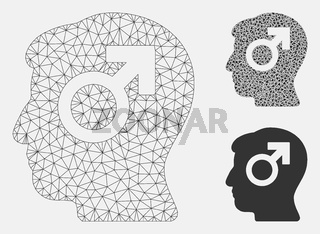 Mind Potency Vector Mesh Network Model and Triangle Mosaic Icon