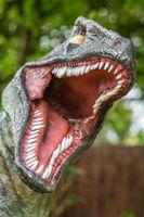Close up of Velociraptor sharp teeth