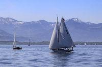 Weiße Segel und Schnee auf den Gipfeln, Bodensee, Landschaft im  Mai