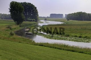 Rheinauen bei Rees, Niederrhein, NRW
