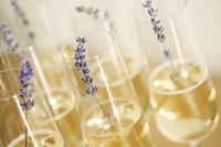 Glasses of champagne decorated with lavender