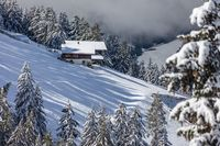 Snow covered mountain farms in the Valle Aurina