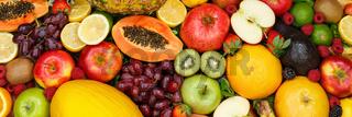 Fruits collection food background banner apples oranges lemons fresh fruit