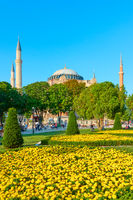 The Hagia Sophia in Istanbul and park