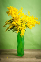 Spring bouquet of mimosa in a green vase