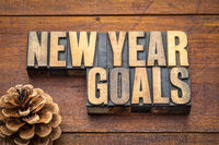 New Year goals word abstract in wood type